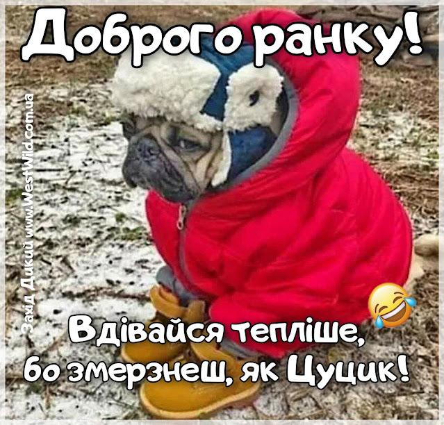 Доброго ранку зимові