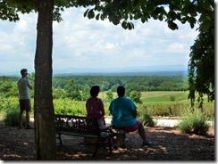 View from Raffaldini's garden