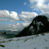 2009-02-08 7 scari