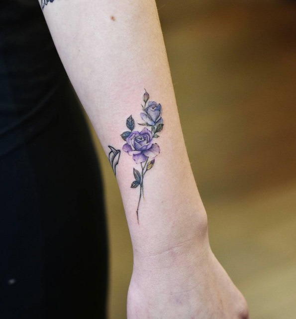 estes_violeta_e_rosas_azuis