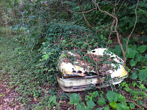 廃車を発見。信仰と自然に対する地元の意識がわかる
