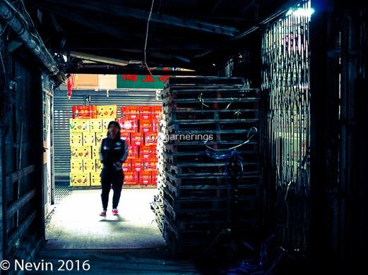 Nevin_20150221_L1011365