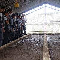 2015-16_vermi-compost