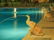 สระว่ายของไอยรารีสอร์ท เกาะช้าง