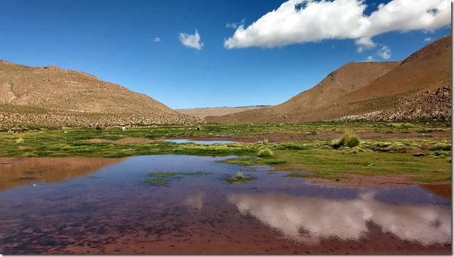 Rio-Putana-Atacama--