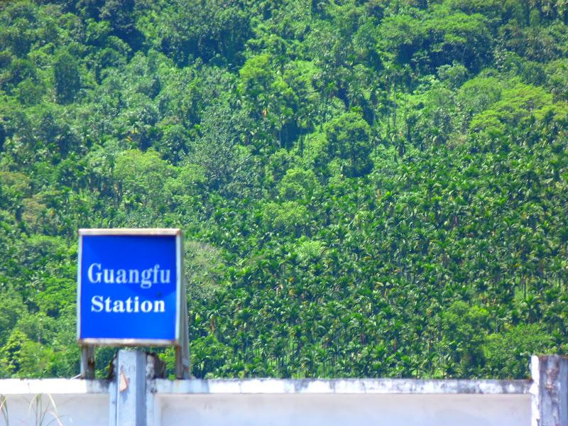 Hualien County. De Liyu lake à Guangfu, Taipinlang ( festival AMIS) Fongbin et retour J 5 - P1240468.JPG