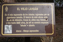 NP Los Alerces