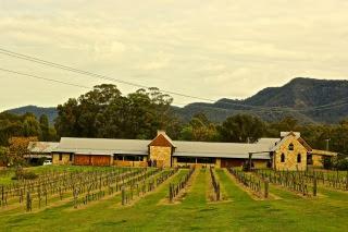 Hunter Valley vineyards, Australia