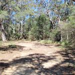 Walking along the trail (221036)