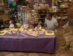 LeVar Burton and a bunch of dogs having a party