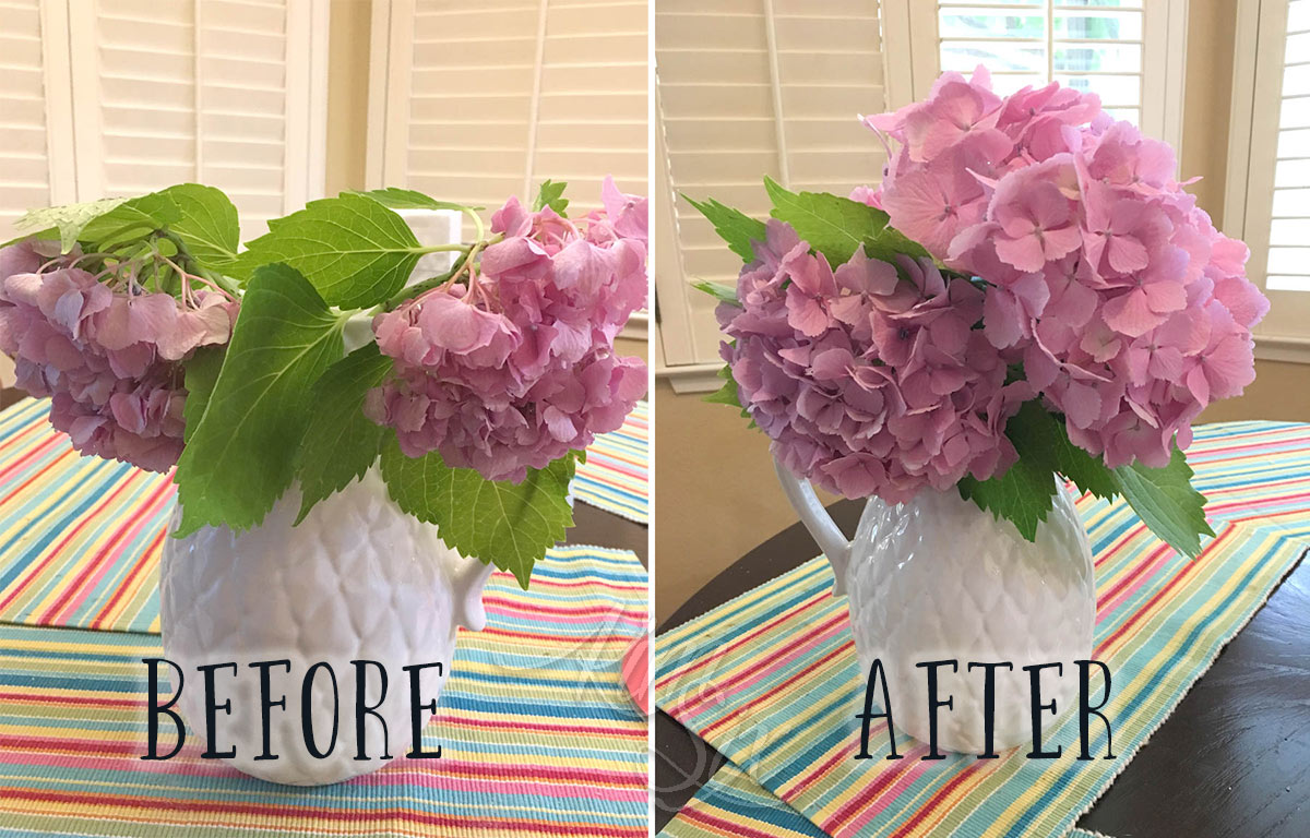 How to save wilting hydrangeas