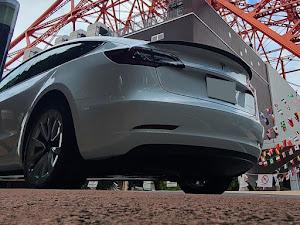 モデル3のカスタム事例画像 toshi-zansuさんの2021年08月02日22:29の投稿