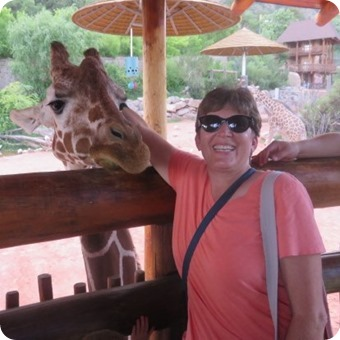 Feeding the Giraffes at Cheyenne Mountain Zoo