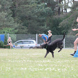 ATM Cup Sporthunde Franken - ATM%2BCup%2BSporthunde%2BFranken%2B367.JPG