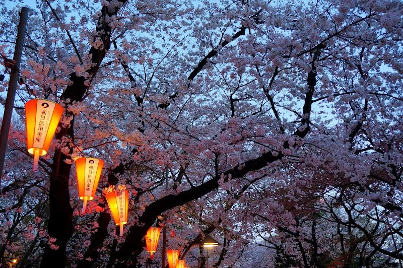 2014 Japan - Dag 1 - britt-DSC03327-0012.JPG