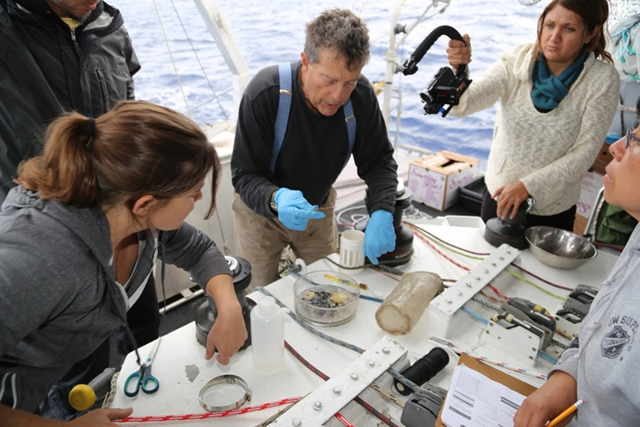 Charles Moore aboard the research vessel 'Algalita' and his team of volunteer researchers on a six-month voyage to determine the scope of plastic pollution and how well lantern fish are surviving. Photo: Charles Moore