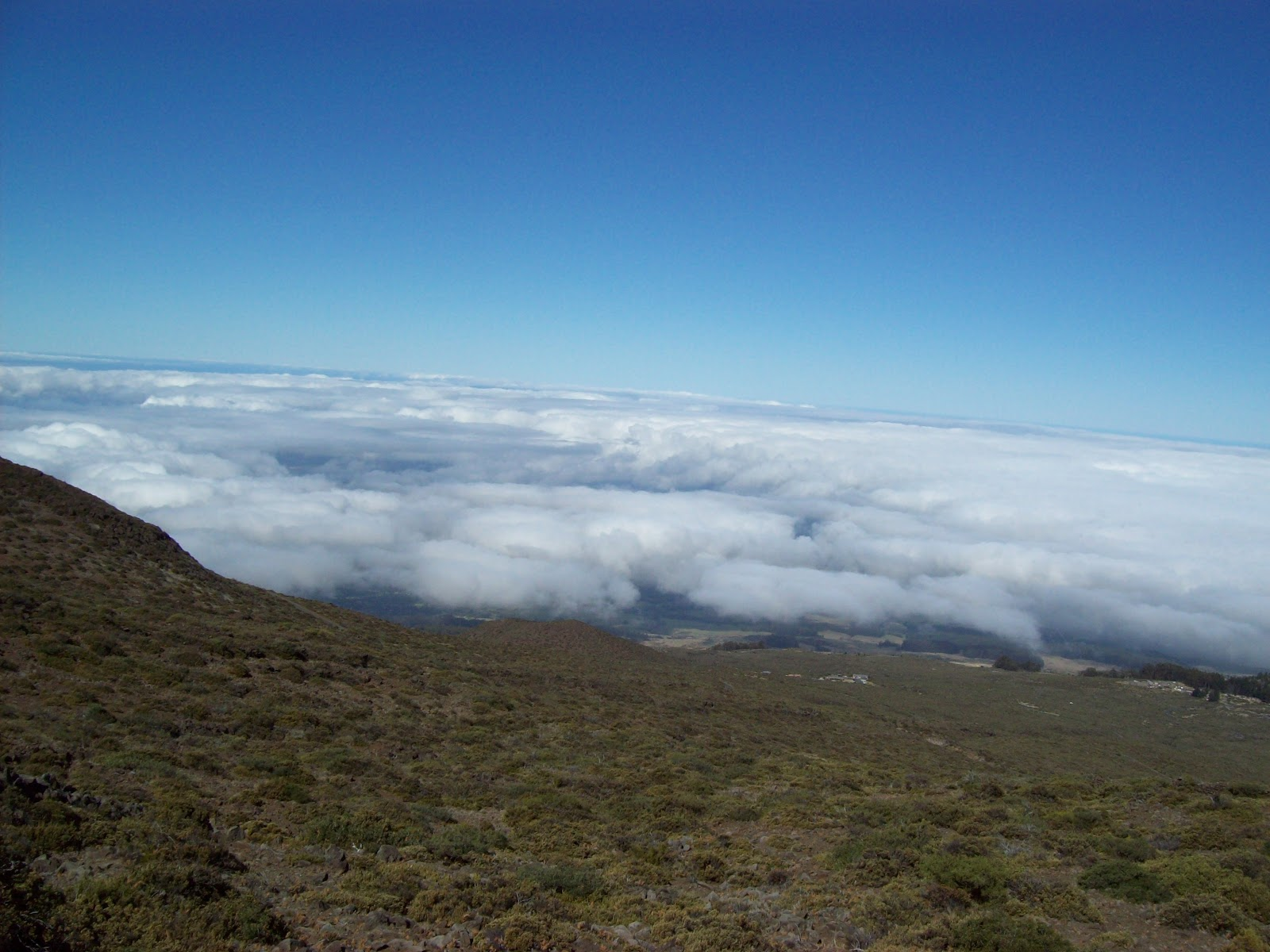 Hawaii Day 8 - 100_8084.JPG