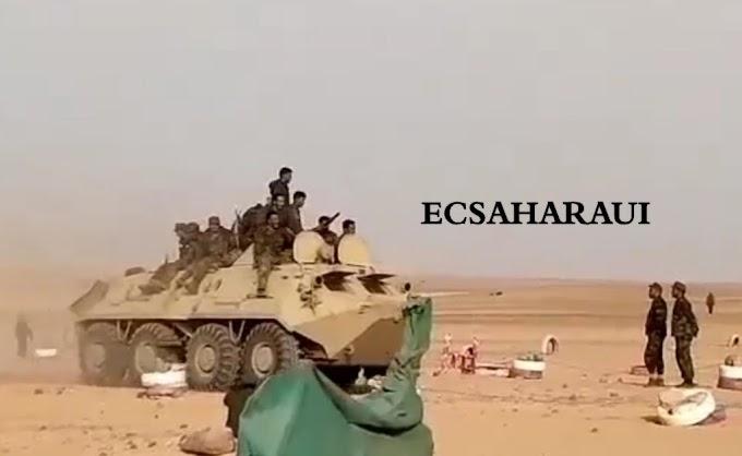 Parte de Guerra Nº221. Guerra del Sáhara Occidental.