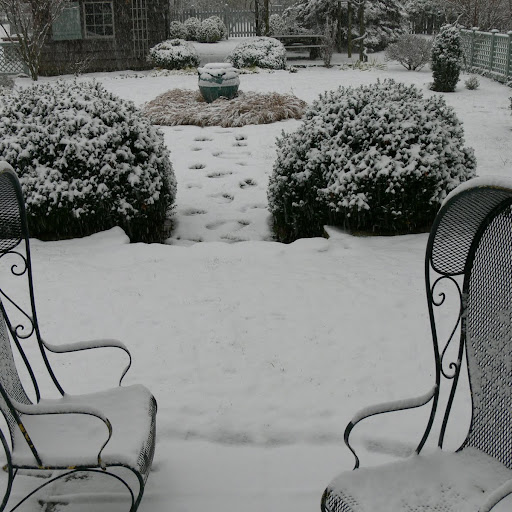 Funky chairs in the snow.