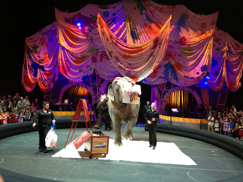 "Video: Opening Night at Ringling Bros ""Built To Amaze"""