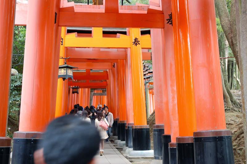 2014 Japan - Dag 8 - jordi-DSC_0689.JPG