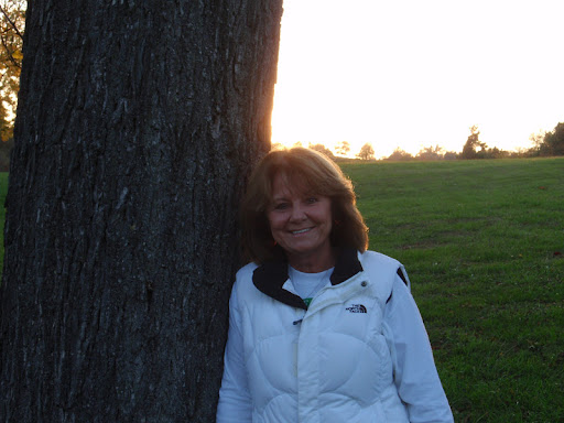 Carol Cook