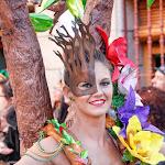 CarnavaldeNavalmoral2015_090.jpg