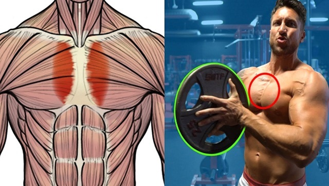 Grow Your Pecs and Target Your Inner Chest
