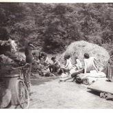n009-012-1966-tabor-sikfokut.jpg