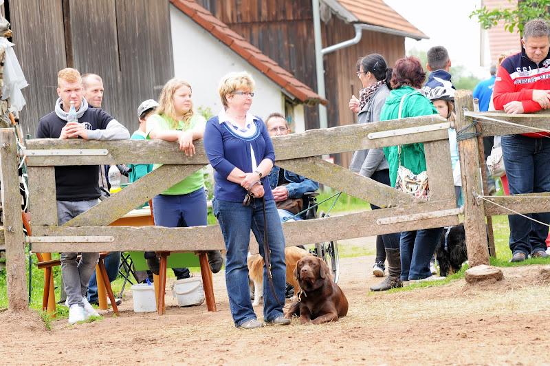 20130630 Auftritt Fenkensees von (Uwe Look) - DSC_3924.JPG