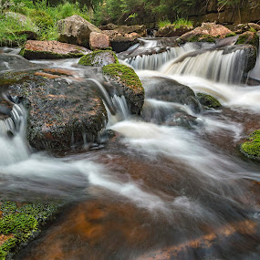 Rolava River by Martin Namesny - Nature Up Close Water ( water, wild, ore mountains, stream, clean, nature, beautiful, moss, stones, river )