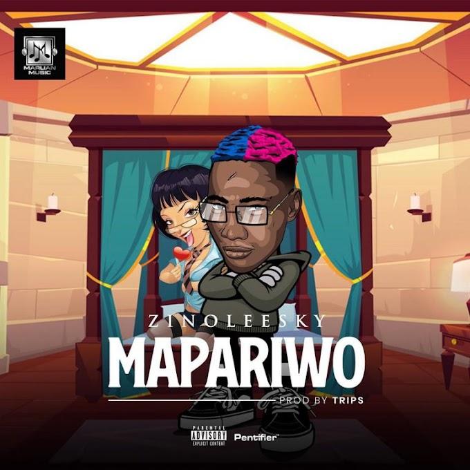[Music] Zinoleesky -Mapariwo