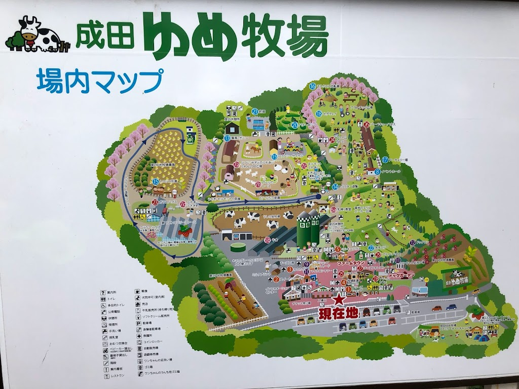 成田ゆめ牧場園内マップ
