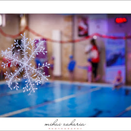 20161217-Little-Swimmers-IV-concurs-0024