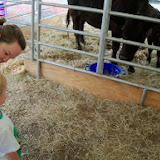 Fort Bend County Fair 2014 - 116_4210.JPG