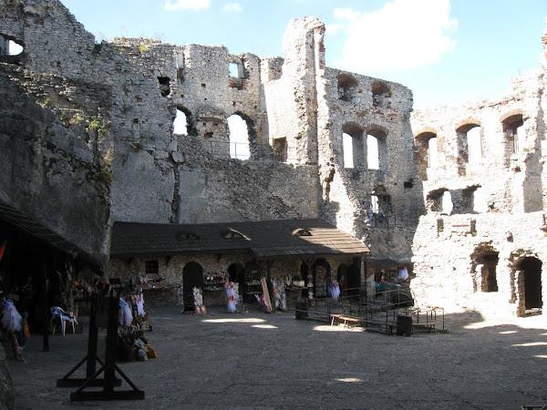 zamek ogrodzieniec - dziedziniec z bibelotami