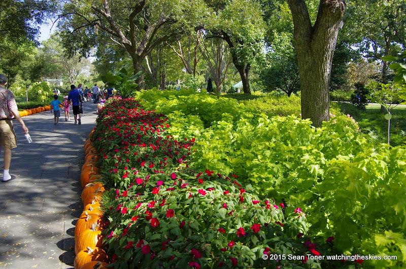 10-26-14 Dallas Arboretum - _IGP4320.JPG