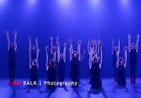 Han Balk VDD2017 ZA avond-7445.jpg