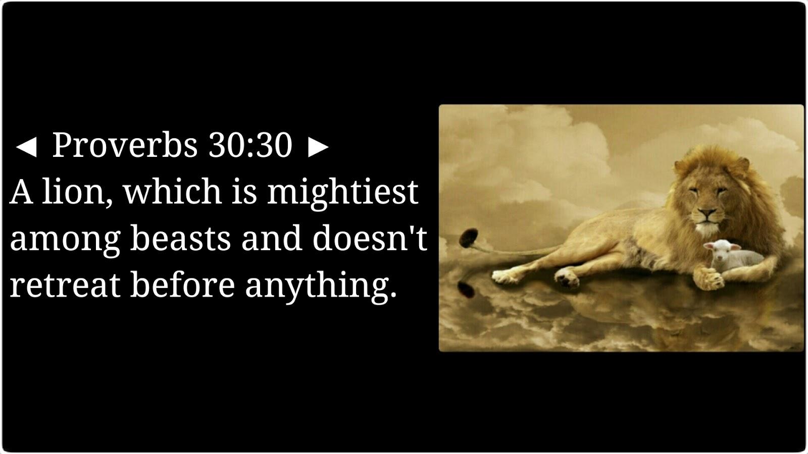 Lion's Mane Bible Verses: Proverbs 30:30