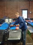 in der Apfelfabrik