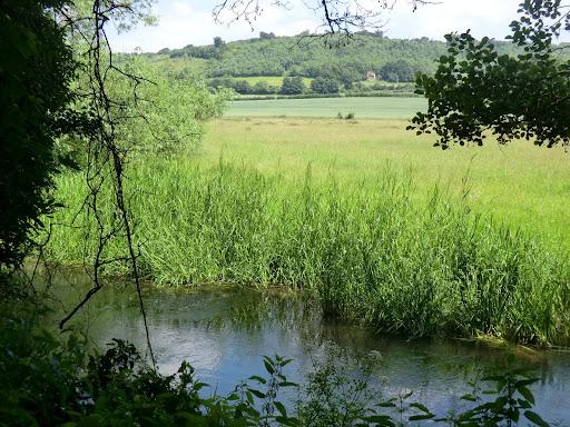 CIMG7494 River Darent outside Shoreham