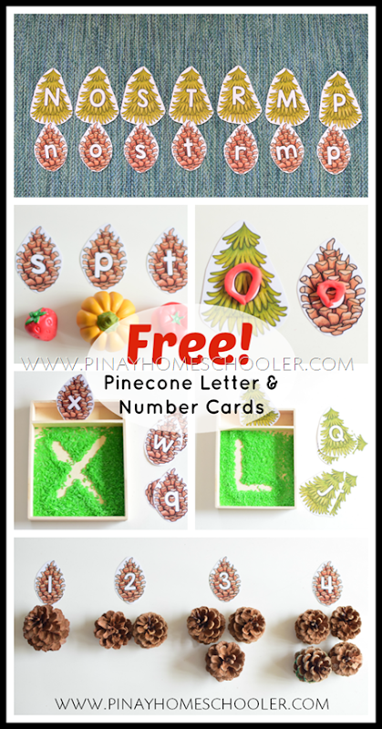 FREE Pinecone Letter and Number Cards