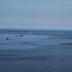Coastal Sept 27, 2013 070 (9)