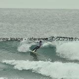 _DSC2313.thumb.jpg