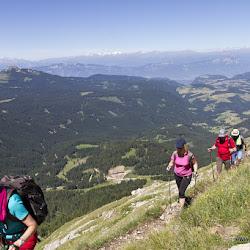 Wanderung auf die Pisahütte 26.06.17-9011.jpg