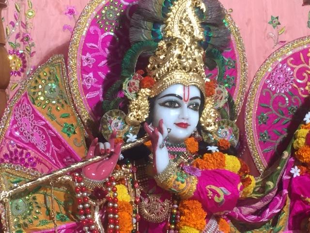 ISKCON Raipur Deity Darshan 02 Jan 2017 (2)