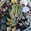 Stephanie Meier's profile photo