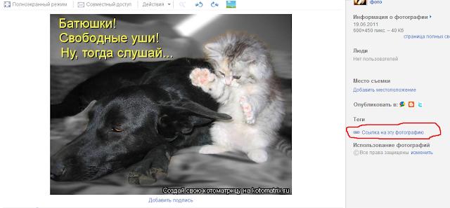 """Как добавить фото в сообщение с помощью """"ВЕБ-альбомов Picasa"""""""