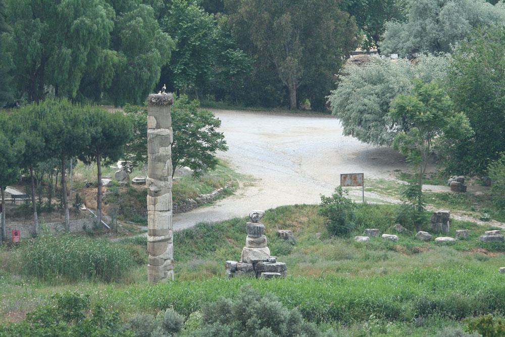 храм Артемиды, аисты