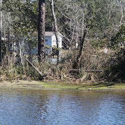 Fowl Marsh from Boat Feb3 2013 159